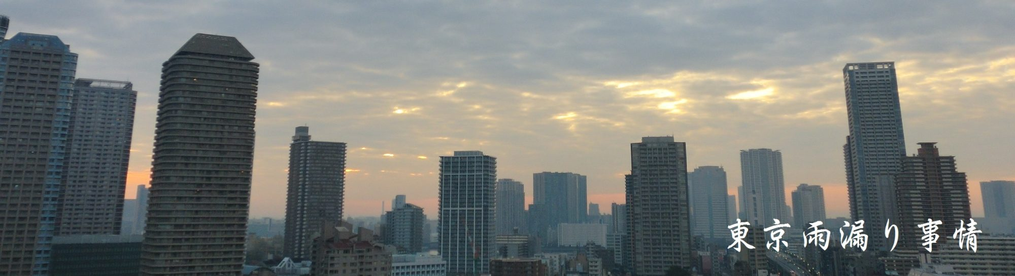 東京雨漏り事情